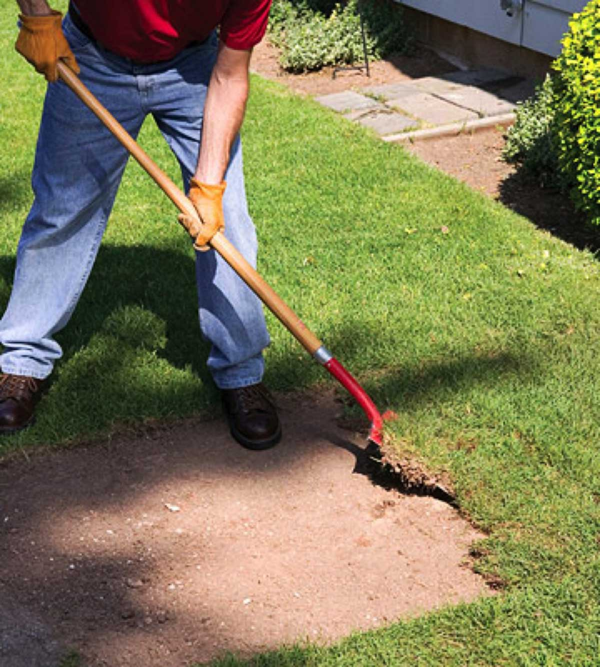 A Guide to Removing Lawn Weed