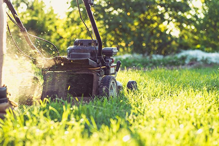 Top Tips to Mowing a Wet Lawn after Rain