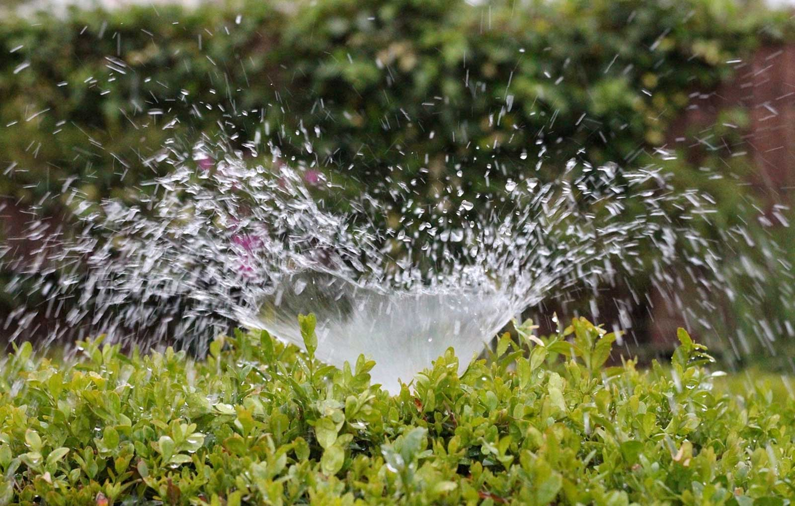 Check your irrigation systems