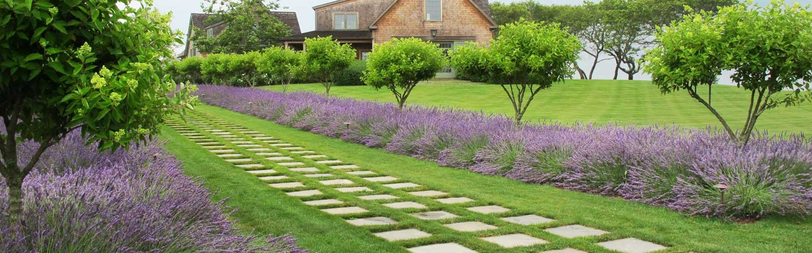 Lawn into Gardening Space