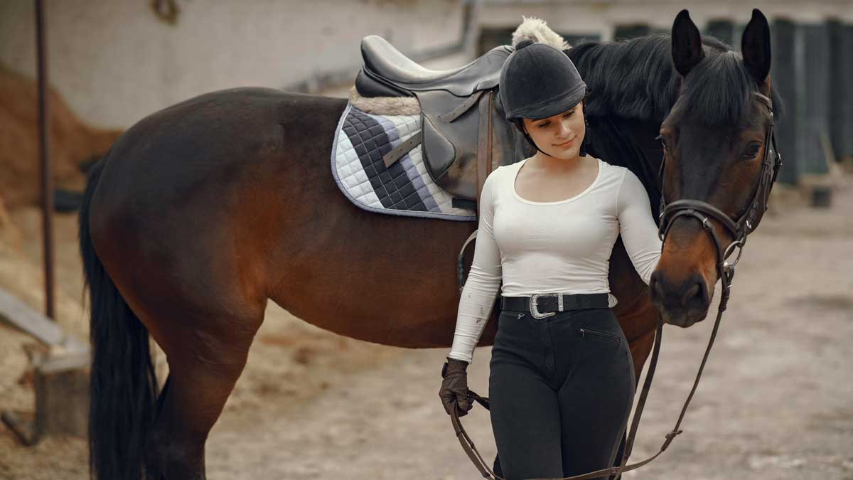 A Quick Guide to Essential Horse Riding Equipment