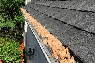 Are Gutter Guards Worth the Trouble