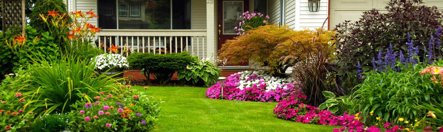 Everything About Pest Proofing Your Garden