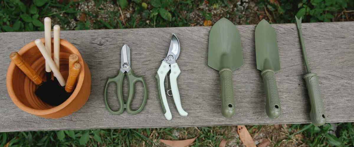 Essential Garden Tools List