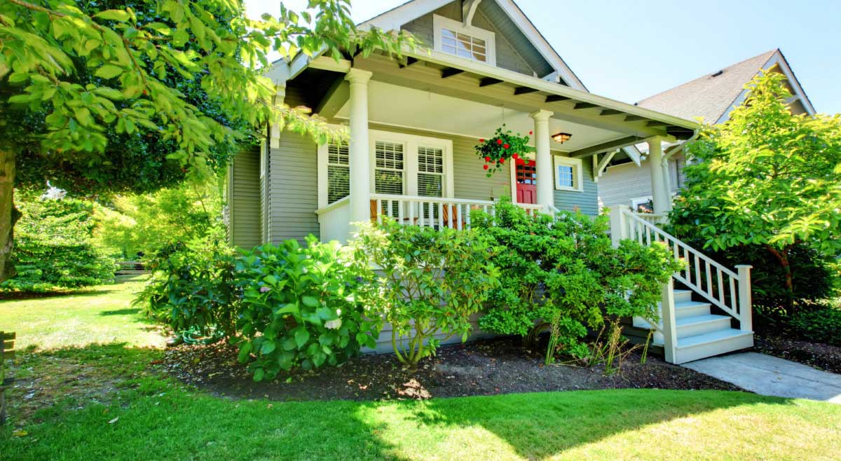 5 Ways To Create A Green And Healthy Home
